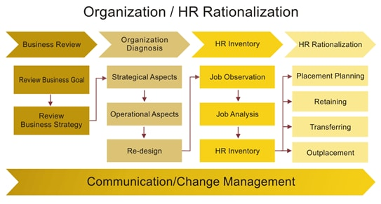 """organizational management review Management systems' organizational assessment provides you with our evaluation of your company's current strengths and limitations at each level in the pyramid of organizational development™ and our recommendations for """"next"""" steps in your company's development."""